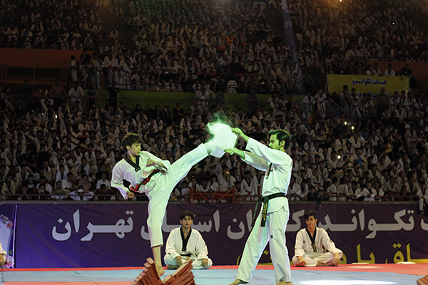 taekwondo day 2019 - IRAN FED TKD (22)