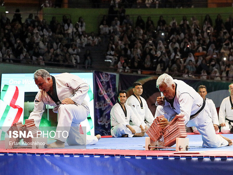 taekwondo day 2019 - IRAN FED TKD (58)