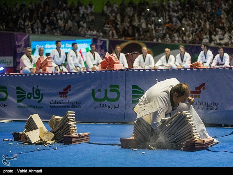 taekwondo day 2019 - IRAN FED TKD (65)