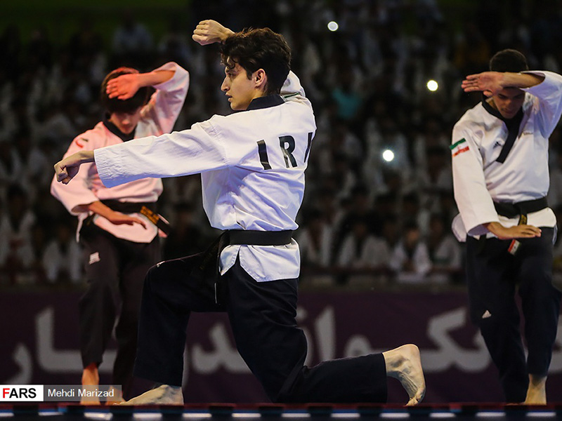 taekwondo day 2019 - IRAN FED TKD (74)