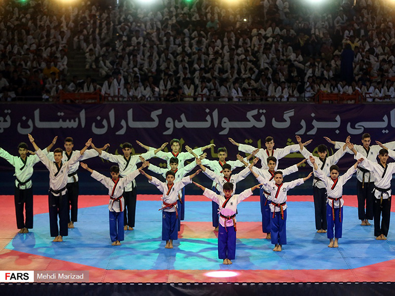 taekwondo day 2019 - IRAN FED TKD (75)