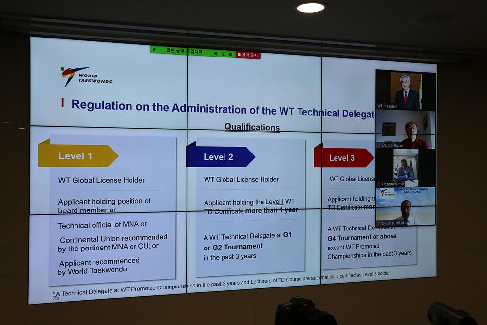 WT Virtual Extraordinary Council Meeting 2